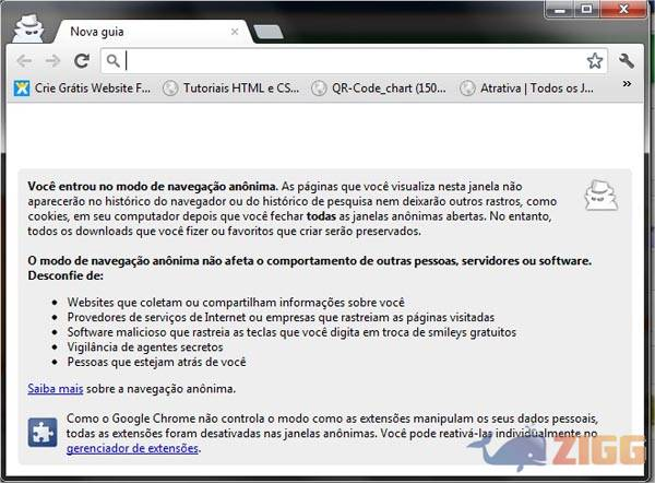 Google Chrome Anônimo